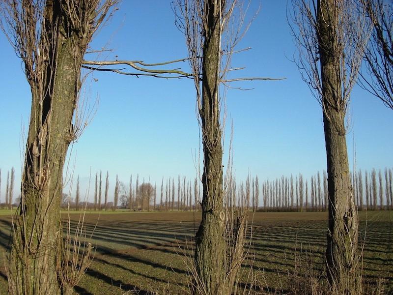 Umgebung Niederrhein